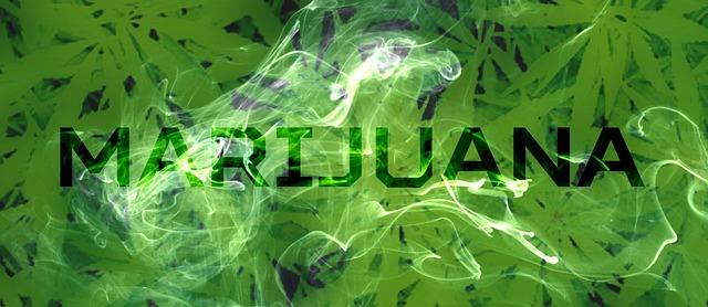 NY Marijuana
